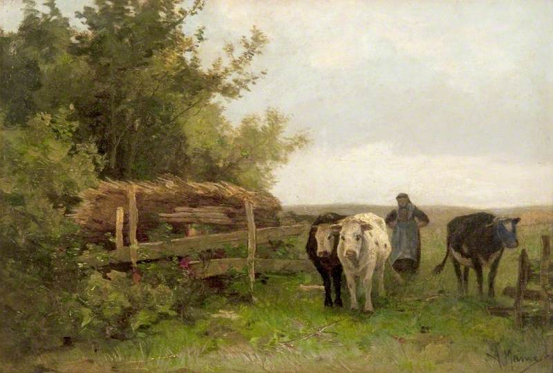 A Woman Driving Cattle