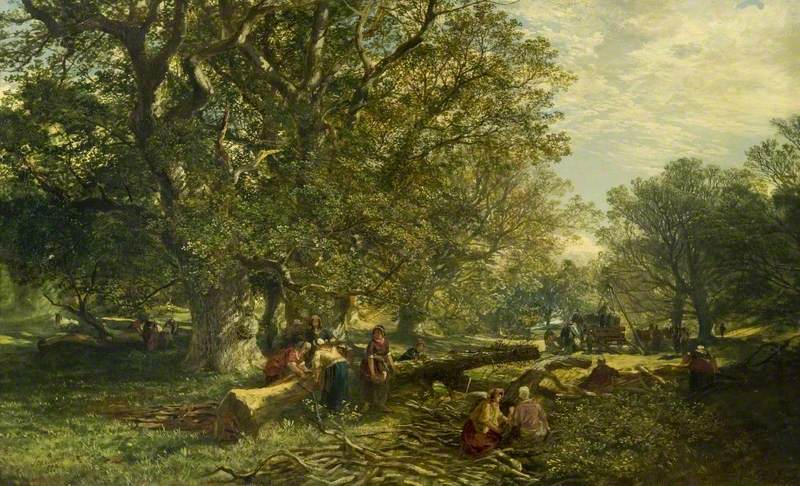 Cadzow Forest
