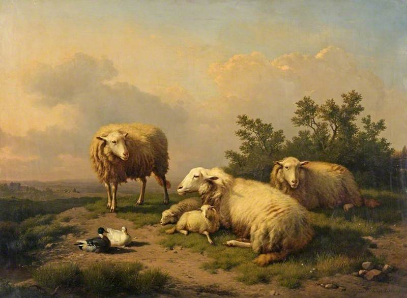 Landscape with Sheep and Ducks