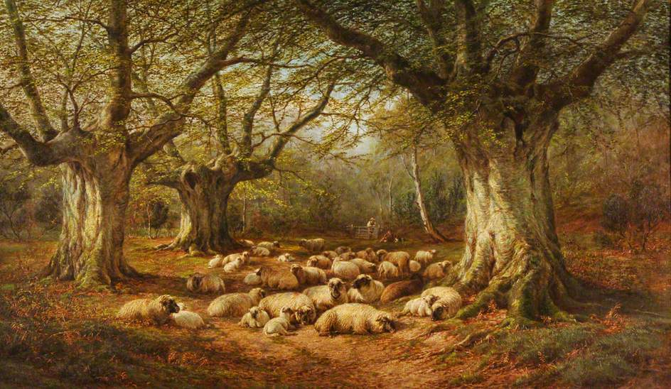 Sheep in a Wooded Landscape