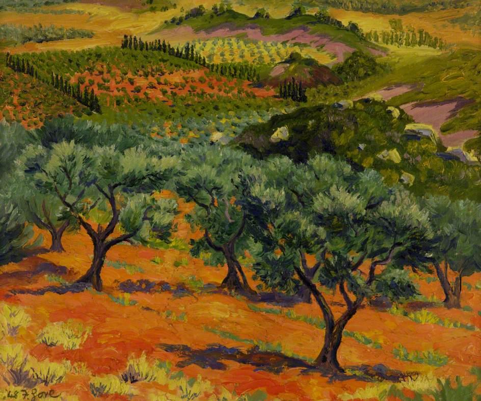Olive Trees, Les Baux