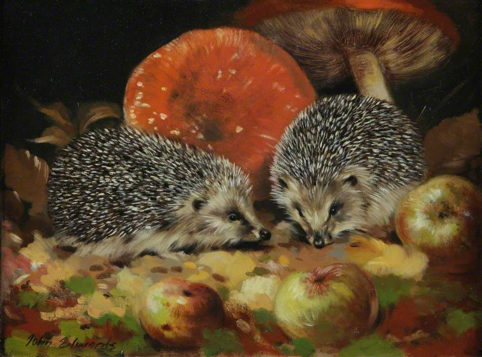 Young Hedgehogs and Toadstools