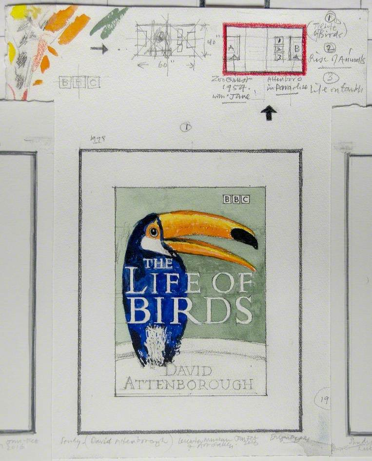 Study – David Attenborough, 'The Life of Birds'