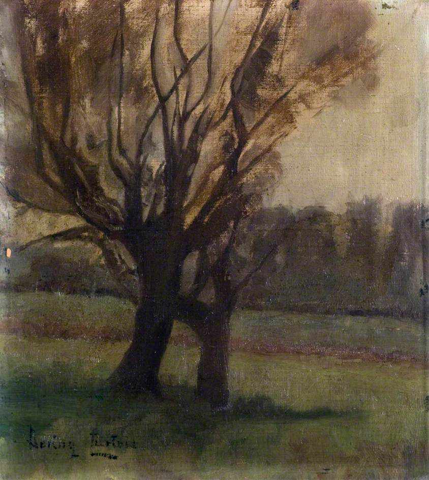 Willow Trees, Winter