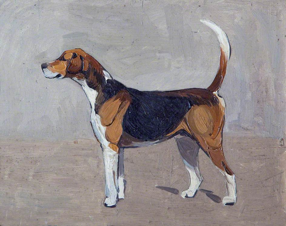 Cottesmore Guider Hound