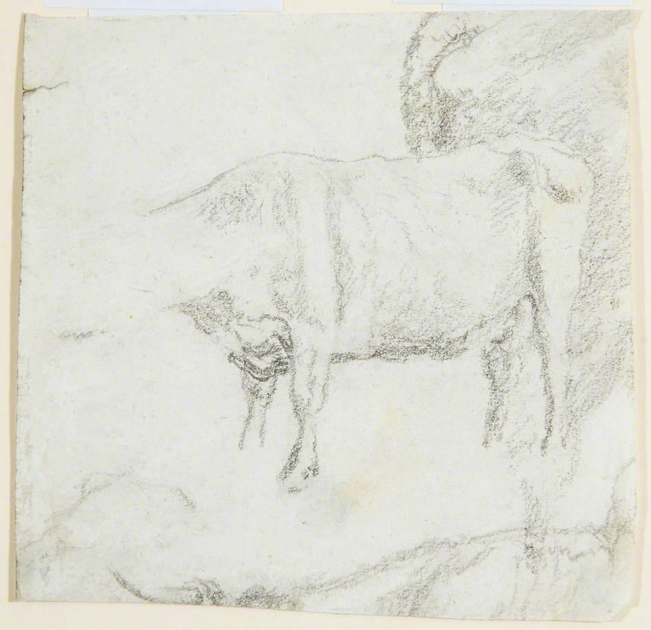 Study of Cattle (I)