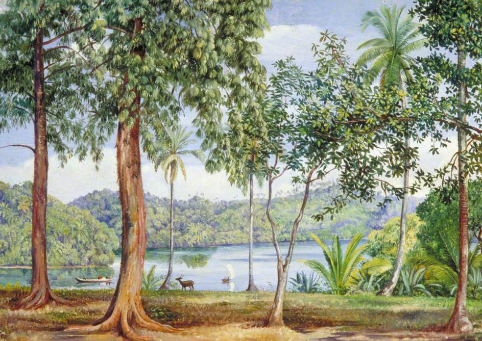 View from Kalutara, Ceylon