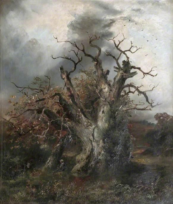 Glendower's Oak
