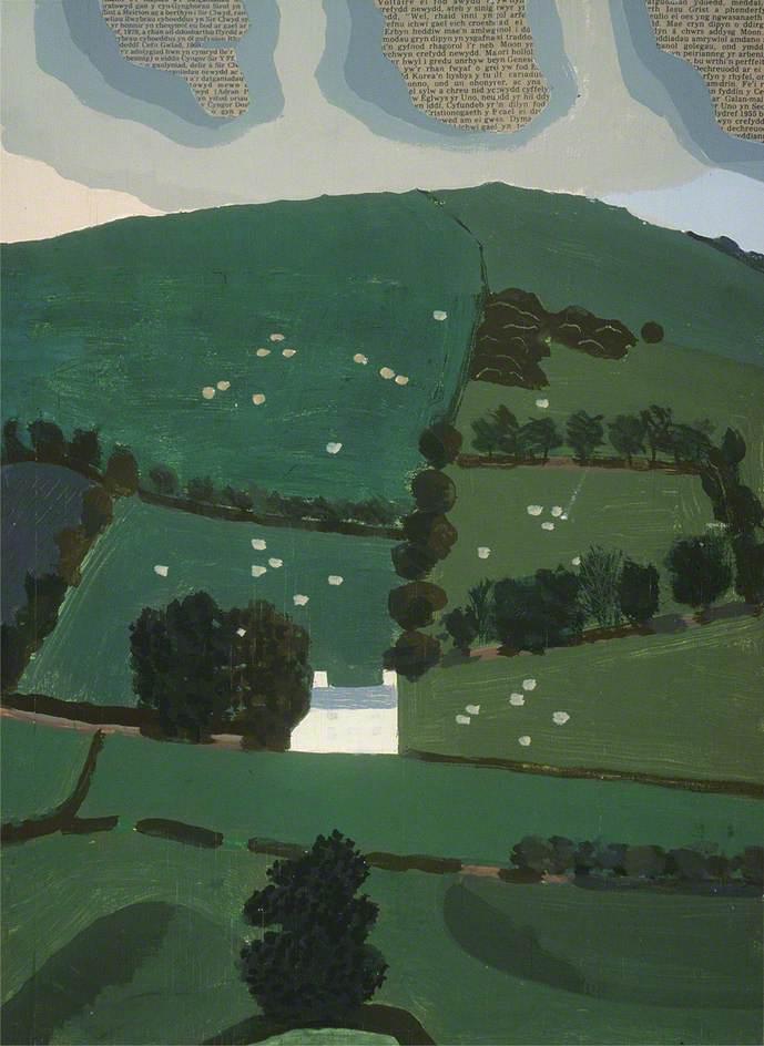 Welsh Hillside near Carno