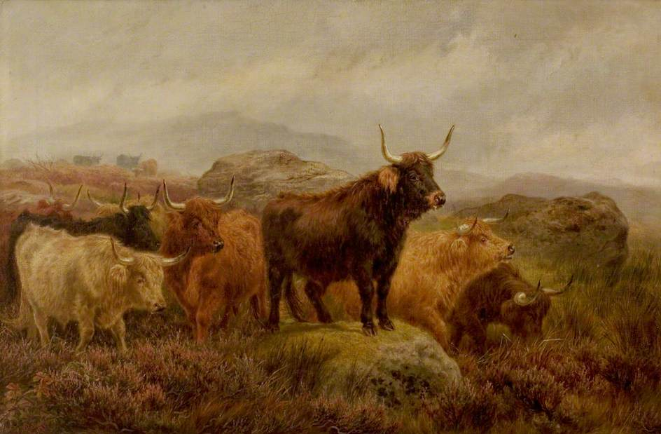 On the Scottish Moors
