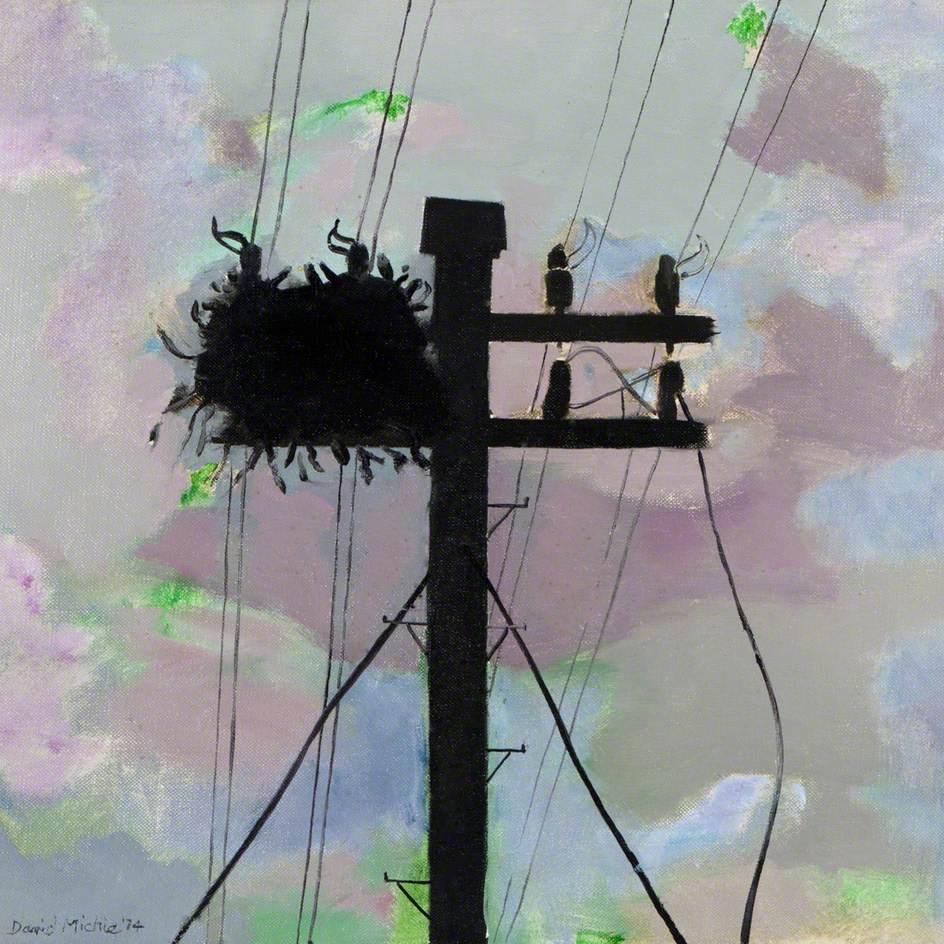 Bird's Nest, Shetland