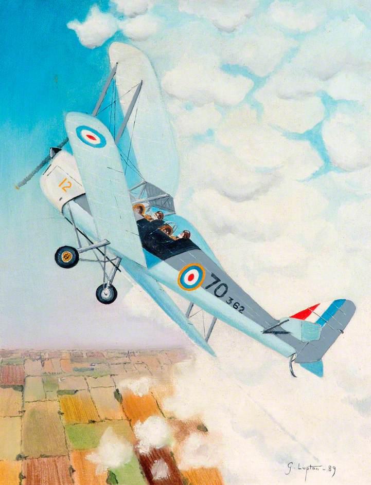 Tiger Moth 70 362
