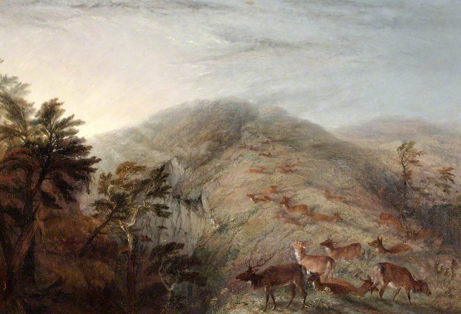 Mountain Scene with Deer