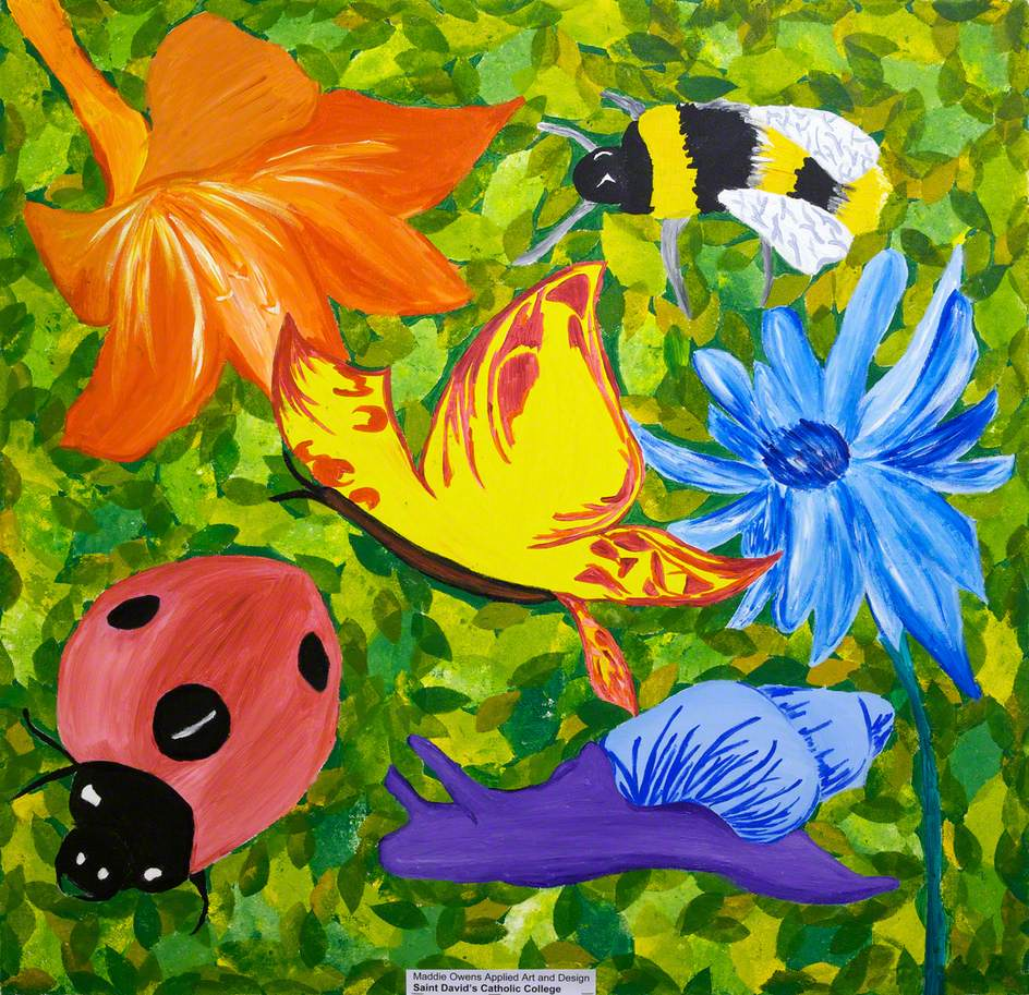 Flowers, Insects and Snail
