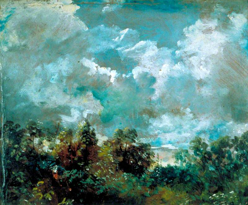 Study of Clouds and Trees