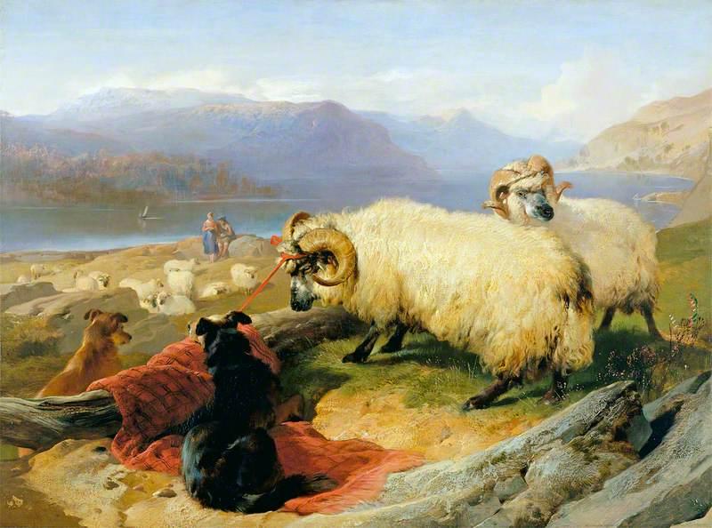 Tethered Rams