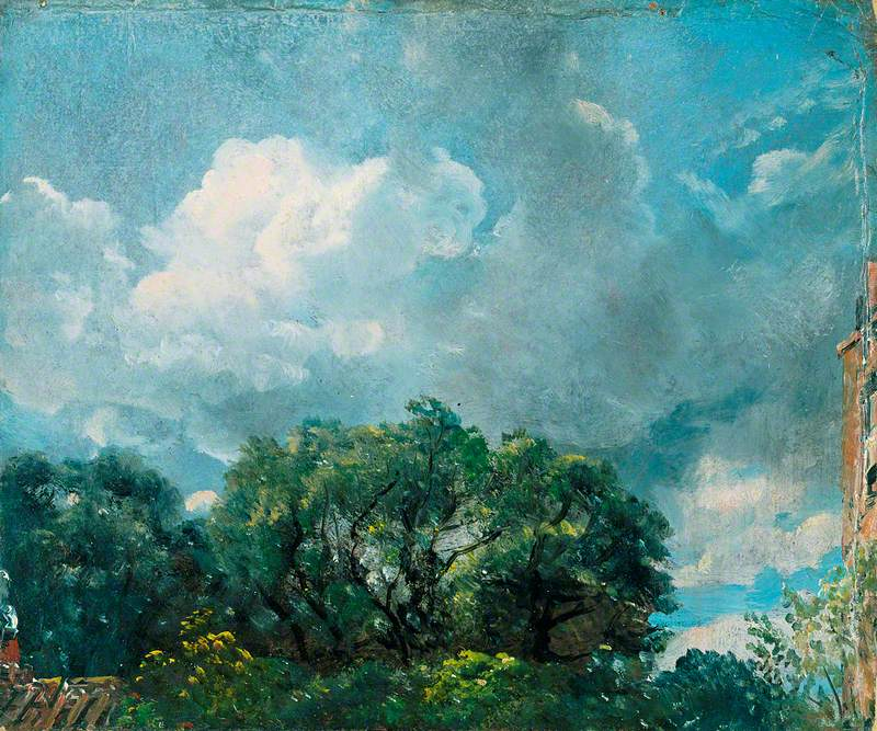 Study of Sky and Trees