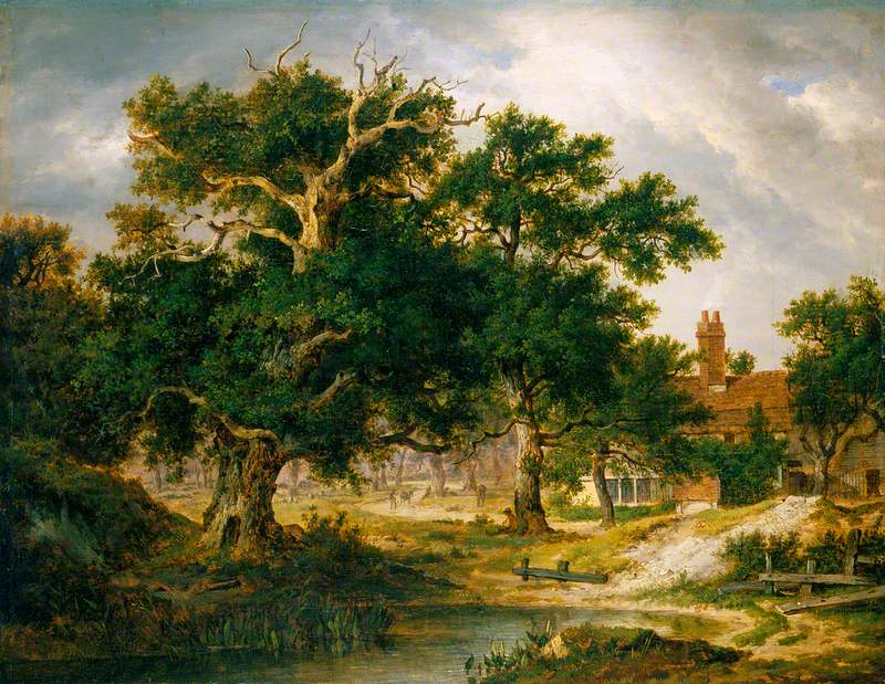 Sir Philip Sidney's Oak