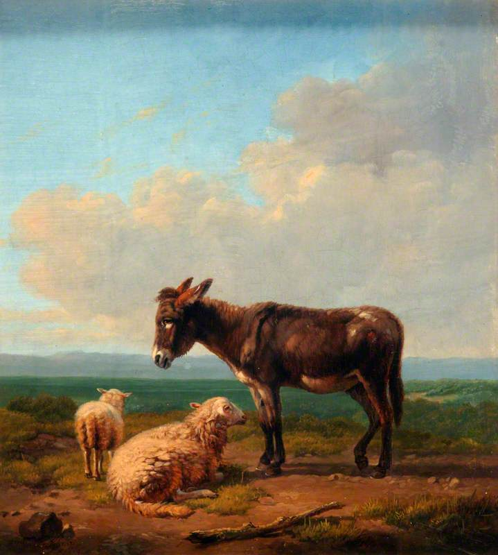 Donkey and Lambs