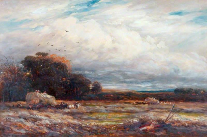 A Hayfield in Surrey