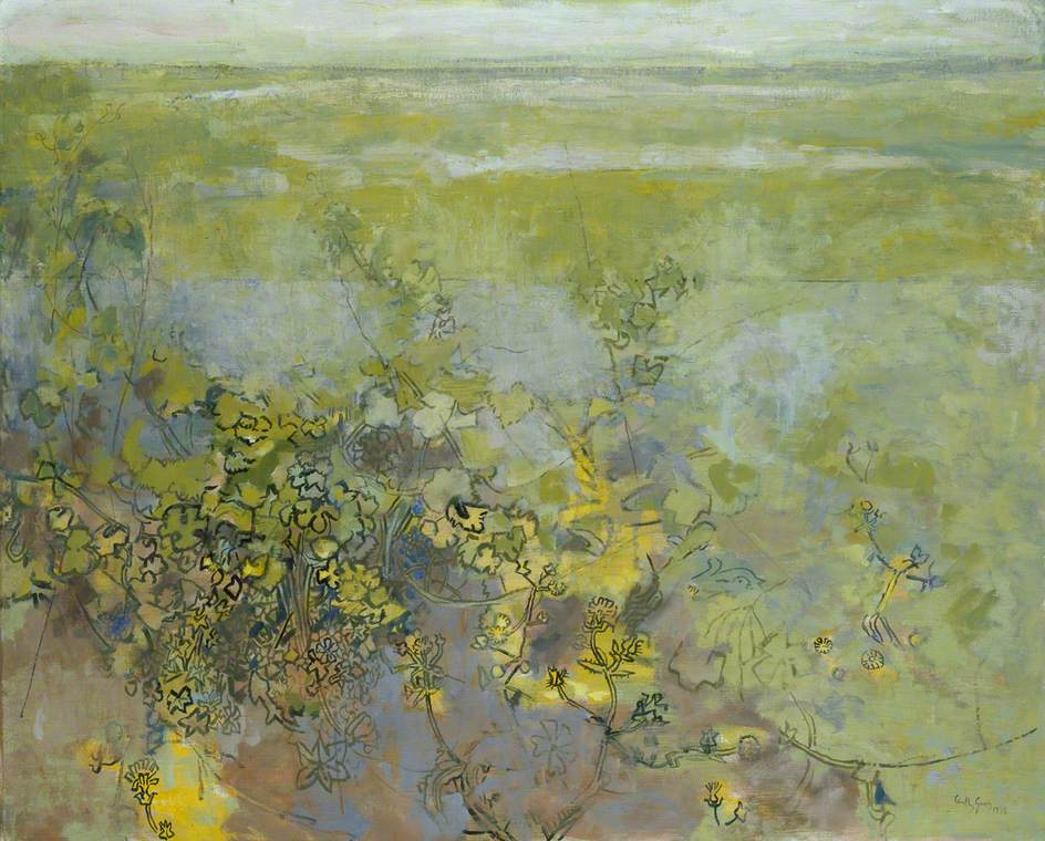 Vineyards and Weeds near St Matre