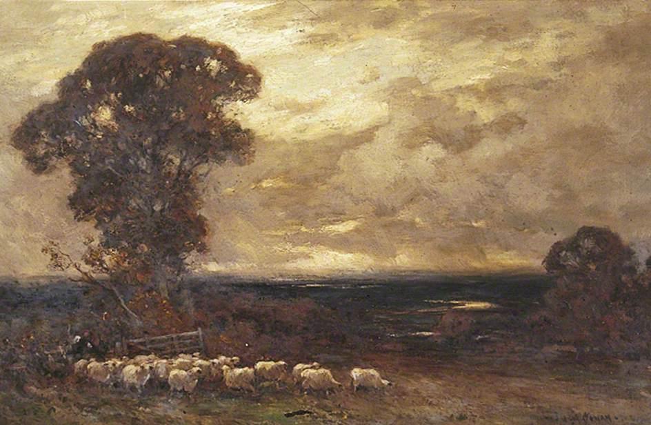 Flock of Sheep, a Heavy Sky